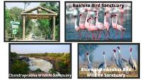 Wildlife sanctuaries and Bird sanctuaries in UP