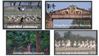 National Parks & Wildlife Sanctuaries of UP