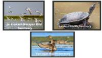 National Parks & Wildlife Sanctuaries of Uttar Pradesh