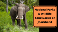 Complete List of National Parks & Wildlife Sanctuaries of Jharkhand