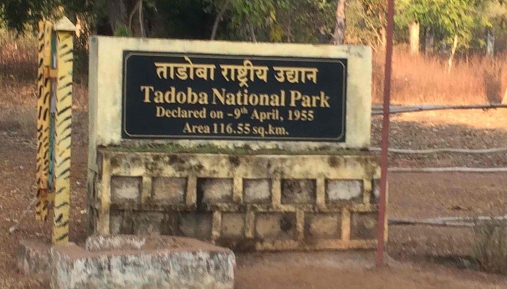 Tadoba Safari Gates Distance