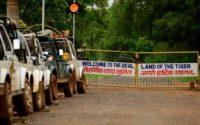Tadoba Safari Entry Gates