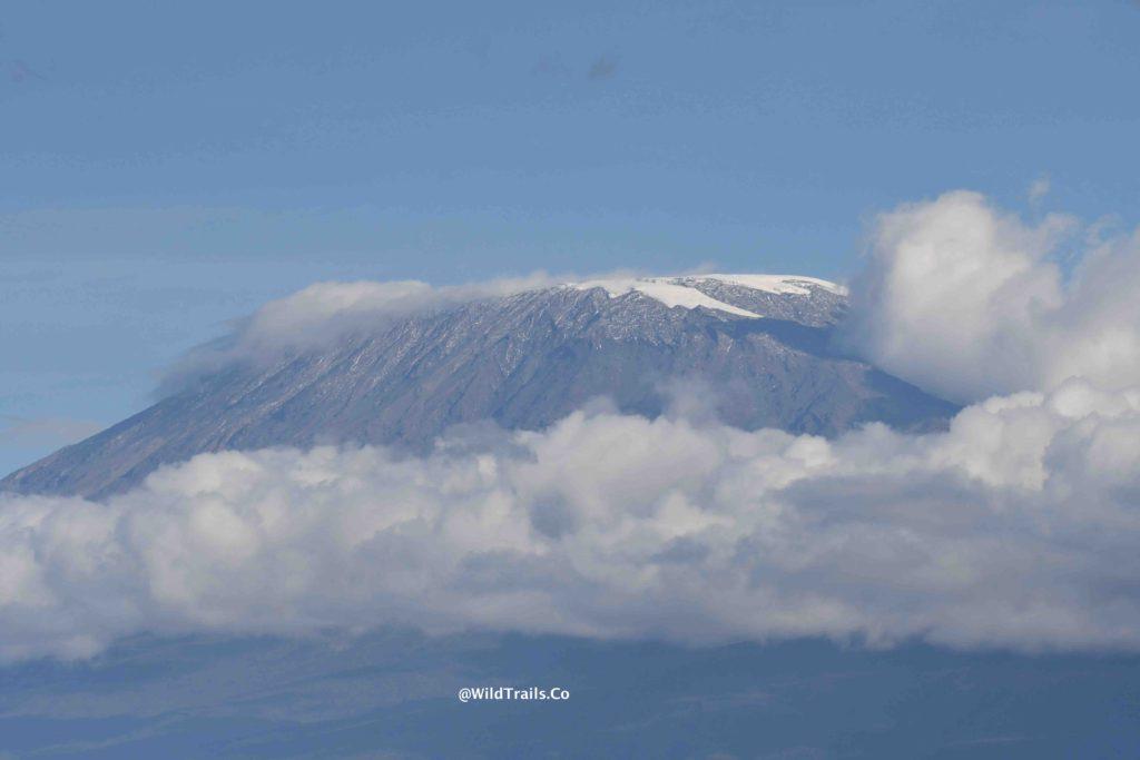 kenya safari for big5 kilimanjaro