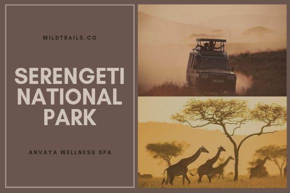 Serengeti National PARK (WildTrails.co)