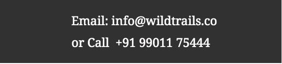 Wildtrails Contact No