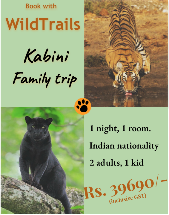 Kabini family packages