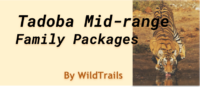 tadoba family package