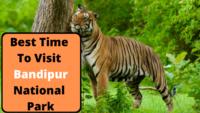 Best Time To Visit Bandipur National Park