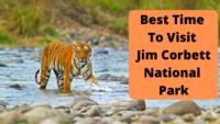 Best Time To Visit Jim Corbett National Park