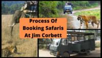 How to book safari at Jim Corbett