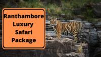 Ranthambore Luxury Safari Package