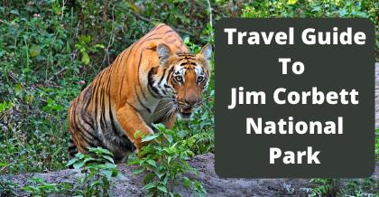 Travel Guide To Jim Corbett National Park
