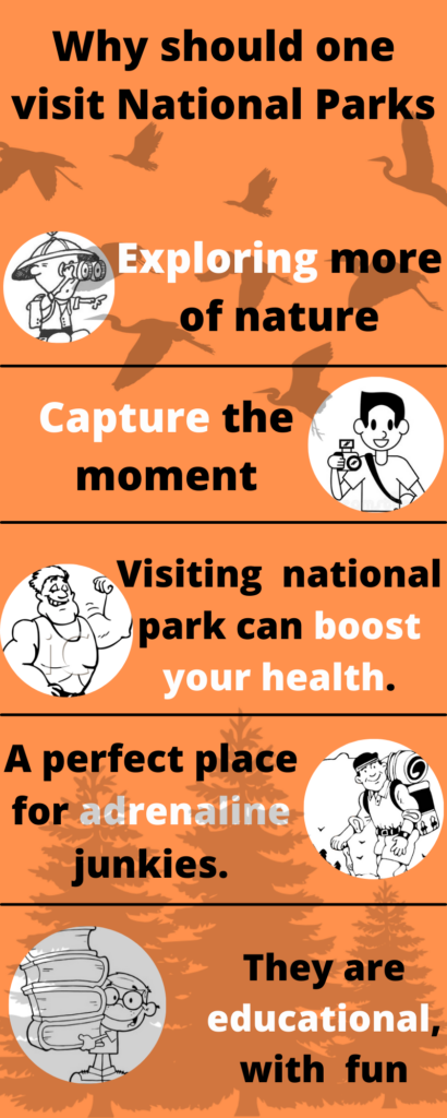 Why should one visit National Parks (1)