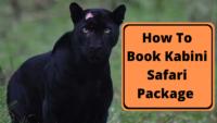 Kabini Safari Package