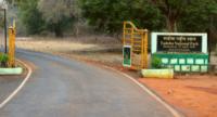 Tadoba National Park Gate