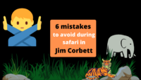 6 mistakes to avoid while on safari in Jim Corbett in 2021 (1)