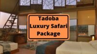 Tadoba Luxury Packages