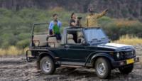 Safaris At Sariska