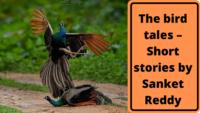 The bird tales