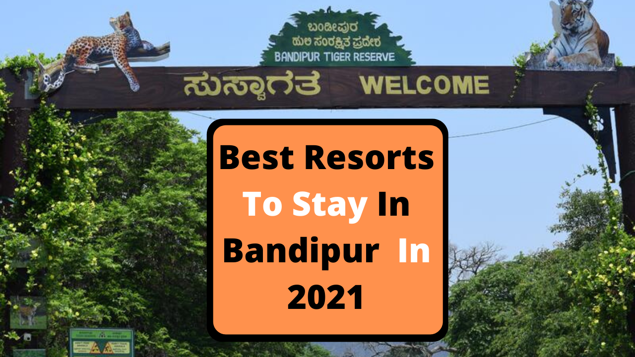 Best Resorts To Stay In Bandipur