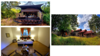 Resorts In Kanha National Park
