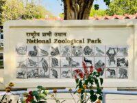 National Parks Near Delhi