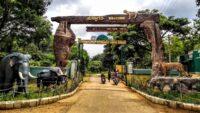 Wildlife Holidays Gateways Near Bangalore