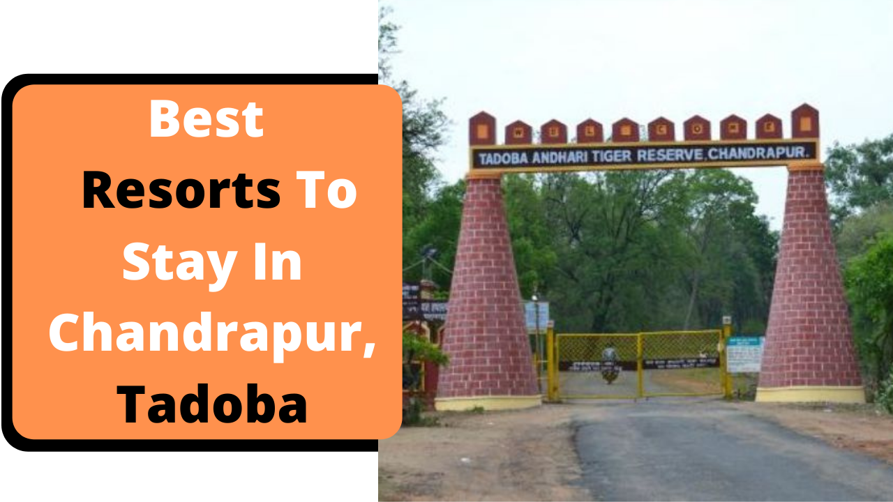 Best Budget Resorts To Stay In Tadoba