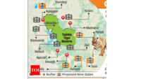 Gates And Zones Of Tadoba