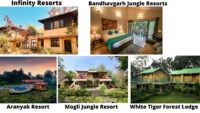 Places to Stay At Bandhavgarh