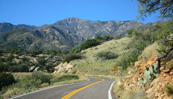 Swift-Trail-Scenic-Drive-Mt.-Graham-Arizona