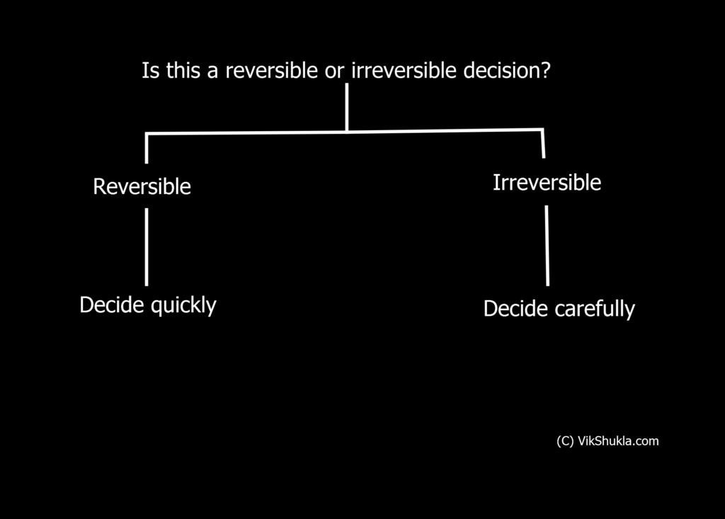 Reversible and Irreversible Decisions