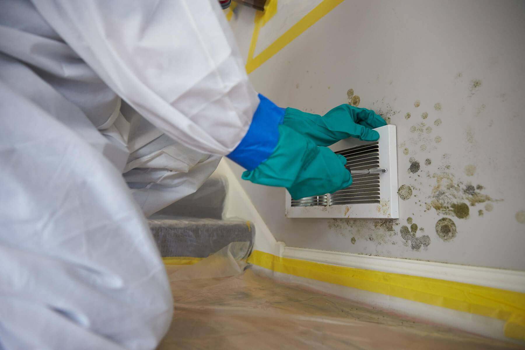Mold Remediation | New Jersey | A-1 Basement Solutions