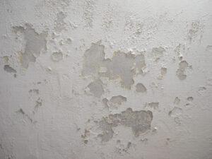 basement-water-damage-bergen-county-nj-a1-basement-solutions-1