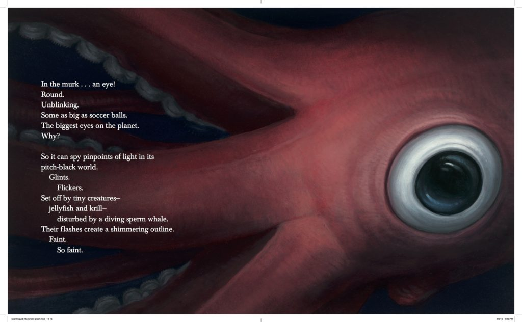 giant-squid-interior-hi-dragged-1