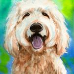Heather Torres Art | Buddy | watercolor painting of dog, golden doodle pet portrait
