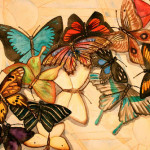 Heather Torres Art | Butterfly Hope | watercolor painting of different colored butterflies