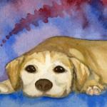 Heather Torres Art | Sasha | watercolor painting of dog, pet portrait