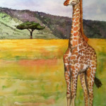 Heather Torres Art | Giraffe | watercolor painting of giraffe