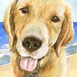 Heather Torres Art | Golden | watercolor painting of dog, golden retriever pet portrait