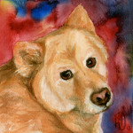 Heather Torres Art | Grace | watercolor painting, pet dog portrait