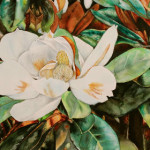 Heather Torres Art | Magnolia | watercolor painting of magnolia flower