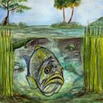 Heather Torres Art | Okeechobee Underwater | watercolor painting of Lake Okeechobee fish, alligator, turtle under water