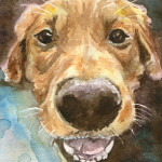 Heather Torres Art | Friend | watercolor painting of pet, dog portrait