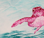 Heather Torres Art | Pink Sea Turtle | watercolor painting of pink sea turtle