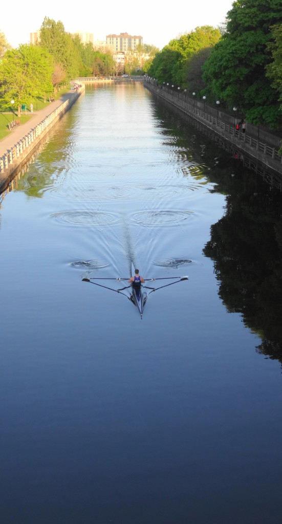 A single rower propels his scull under the Corkstown Bridge on the Rideau Canal