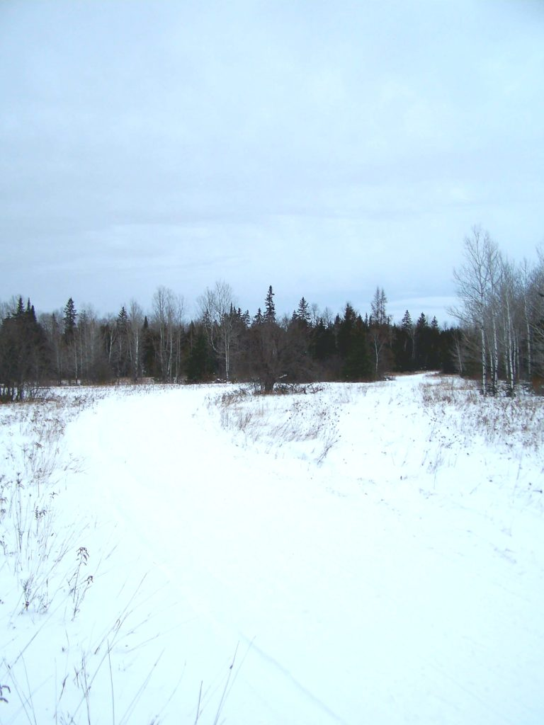 A snowmobile trail crosses a field in the Marlborough Forest.