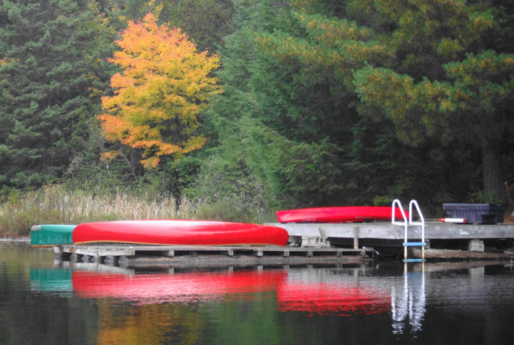 A golden maple and red canoes reflect in the water of Canoe Lake.