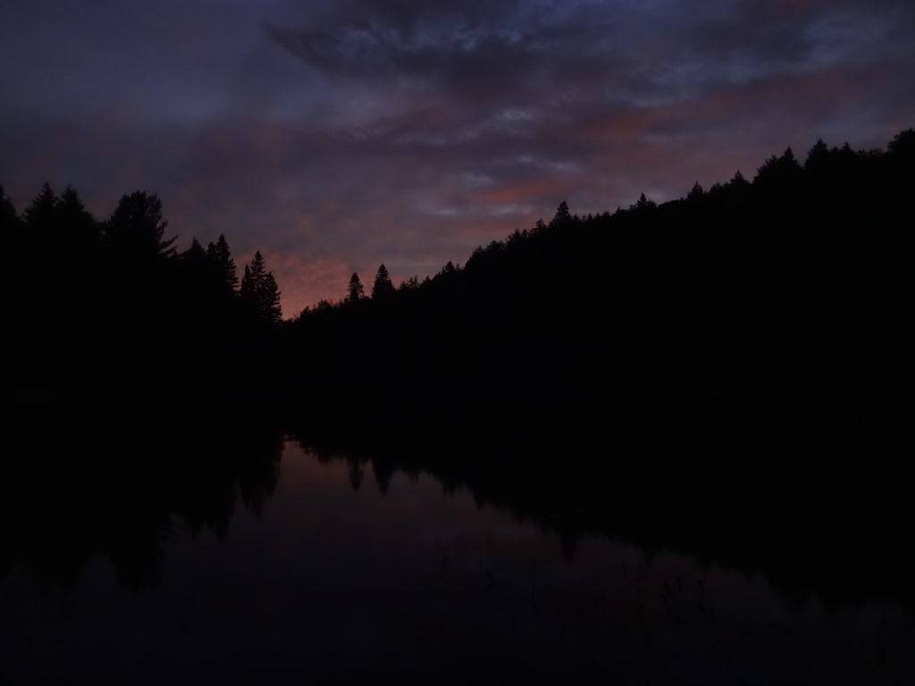 A faint peach light seeps above dark trees as dawn begins on Head Lake.