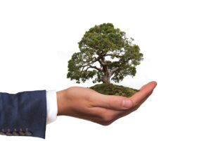 ISO 14001 Consultants in Bangalore